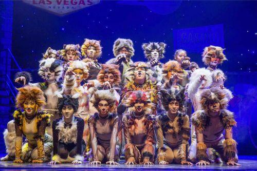 山艺音乐剧班学子毕业大戏《猫》首演成功获赞誉